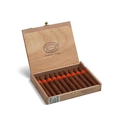 Partagas Serie P No 2 Sbn Box Of 10